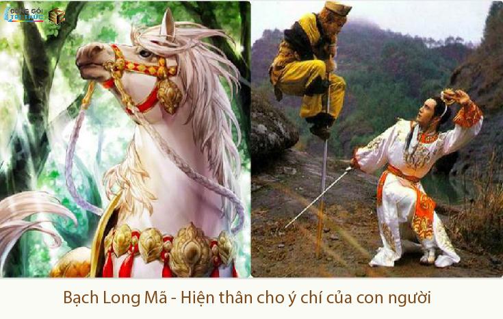 Bạch Long Mã- hiện thân của ý chí -Tây Du Ký-Một góc nhìn-trương nguyễn hiền ni-ksc-donggoitrithuc