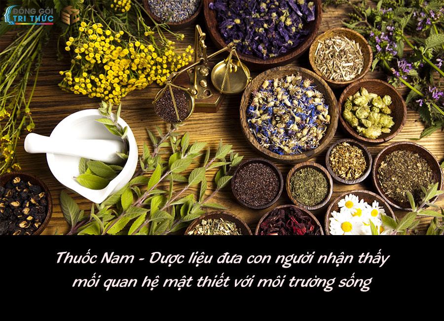 Thuốc Nam thành phần chủ yếu là cây cỏ, đưa con người hiểu được mối quan hệ mật thiết giữa con người với môi trường sống.